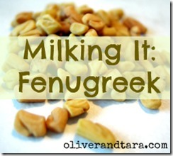 Milking It: Fenugreek | oliverandtara.com