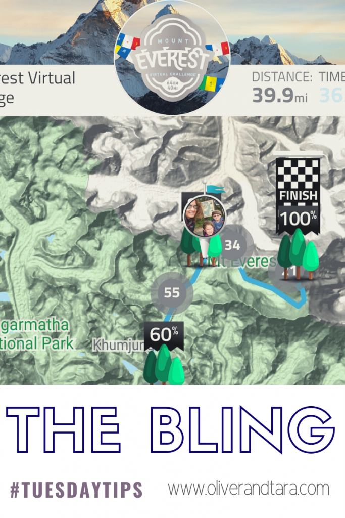 Hiking for the bling - using virtual challenges for fun and learning | oliverandtara.com